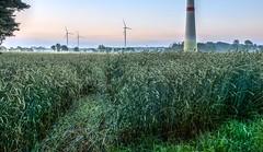 Handrup Sunrise (Skylark92) Tags: duitsland deutschland germany handrup emsland samtgemeinde lengerich sunrise zonsopgang sonnenaufgang hdr landschap landscape landschaft windmill windmolen windmühle