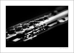 Wm. S. Haynes flute (G. Postlethwaite esq.) Tags: 1904 bw bostonmass canon40d macro sigma70200f28 unlimitedphotos wmshaynes blackandwhite bokeh closeup depthoffield flute fullframe monochrome musicalinstrument openhole photoborder selectivefocus woodwind