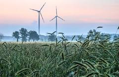 Handrup Sunrise (Skylark92) Tags: windmühle windmolen windmill landschaft landscape landschap hdr sonnenaufgang zonsopgang sunrise lengerich samtgemeinde emsland handrup germany deutschland duitsland