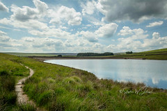 SJ1_8769 - Walshaw Dean Lower Reservoir (SWJuk) Tags: swjuk uk unitedkingdom gb britain england yorkshire westyorkshire calderdale walshawdean walshawdeanlowerreservoir water reservoir grass grasses path footpath countryside landscape reflections bluesky clouds 2019 jun2019 summer nikon d7200 nikond7200 nikkor1755mmf28 rawnef