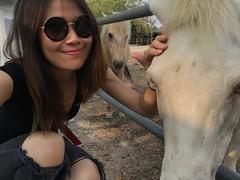 horses and I (ChalidaTour) Tags: thailand thai asia asian girl femme women nina horse animal sunglasses trousers broken fence white petite sweet cute beautiful knees portrait