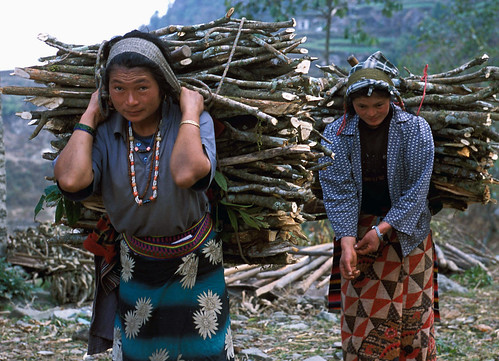 """2 women with wood Nepal_OPT_Bruce • <a style=""""font-size:0.8em;"""" href=""""http://www.flickr.com/photos/55440309@N08/48126076163/"""" target=""""_blank"""">View on Flickr</a>"""