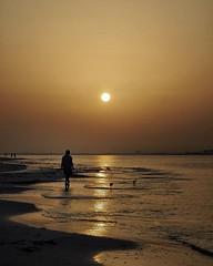 Sanibel Sunrise 6/25/19 #sanibelisland #sanibel #sanibelflorida #florida_greatshots #sunrisesofinstagram #instasunrise #minimal #olympusinspired #olympuspenf #mzuiko40150mm #landscapephotography #photooftheday #wanderlust #floridasky #sunrise_lovers (Sivyaleah (Elora)) Tags: sanibel florida sunrise vacation 2019 june minimal silhouette shoreline olympus penf pen f landscape seascape orange sky ocean horizon