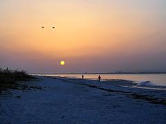 Sanibel Sunrise 6/25/19 #sanibelisland #sanibel #sanibelflorida #florida_greatshots #sunrisesofinstagram #instasunrise #minimal #olympusinspired #olympuspenf #mzuiko40150mm #landscapephotography #photooftheday #wanderlust #floridasky #sunrise_lovers (Sivyaleah (Elora)) Tags: sanibel island florida vacation june 2019 sunrise minimal olympus penf pen f zuiko 40150mm landscape seascape sky