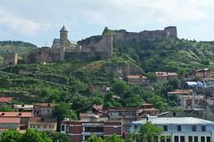 P1010116 (Бесплатный фотобанк) Tags: грузия тбилиси лето