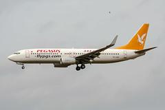 TC-AAP (PlanePixNase) Tags: aircraft airport planespotting bru ebbr brussels brüssel bruxelles zaventem boeing b738 737800 737 pegasus