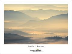 Bright Ridges (DKNC) Tags: roughridge blueridgeparkway northcarolina nc blueridgemountains fog sunrise ridges layers daleking