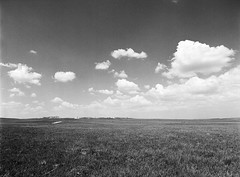 Grassland (LarsHolte) Tags: pentax 645 pentax645 645n 6x45 smcpentaxa 35mm f35 120 film 120film analog analogue kosmo foto mono 100iso mediumformat blackandwhite classicblackwhite bw monochrome filmforever filmphotography d76 ishootfilm larsholte homeprocessing usa canam highway plains landscape grassland