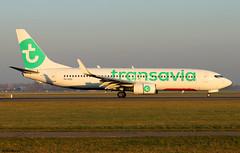 Transavia Boeing 737-8K2(WL) PH-HZD (RuWe71) Tags: transavia hvtra airfranceklmgroup nederland boeing boeing737 boeing737ng b737 b738 b737800 b737800wl b7378k2 b7378k2wl boeing737800 boeing737800wl boeing7378k2 boeing7378k2wl boeing737nextgen phhzd cn28376252 amsterdamschiphol amsterdamschipholairport schiphol schipholairport schipholamsterdam ams eham polderbaan narrowbody twinjet runway winglets evening