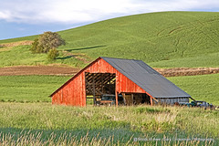Dawn's Golden Glow (Gary Grossman) Tags: palouse morning golden landscape barn red old wheat farm cars northwest washington early garygrossman garygrossmanphotography shotsofawe redbarn oldcars vintage landscapephotography pacificnorthwest goldenhour earlymorning