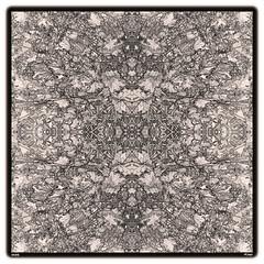 M98 (bDe gNas) Tags: denniscordell mirror nature environment earth flowers impermanence buddhism mandala haiku koan gaia kaleidoscope squareformat monochrome mitosis