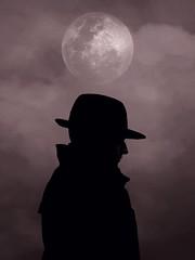 Under the Moon (Silfrax) Tags: screenshot games gamephotography watchdogs ubisoft