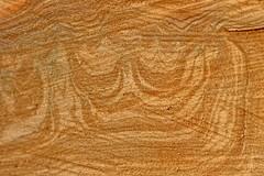 Le bois est Roi - The wood is King (p.franche burn out) Tags: tronc texture bois hiver arbre couronne motif abstrait nature parc trunk wood winter tree crown pattern abstract park macro sony sonyalpha65 dxo photolab2 bruxelles brussel brussels belgium belgique belgïe europe pfranche pascalfranche schaerbeek schaarbeek parcjosaphat josaphatpark baum 樹 trae árbol δέντρο fa albero ツリー treet drzewo дерево ต้นไม้