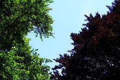 Parc des Raisses @ Annecy-le-Vieux (*_*) Tags: europe france hautesavoie 74 annecy savoie 2019 june spring printemps sunny city annecylevieux