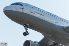 Lufthansa Airbus A320-214(WL) D-AIZY (712854) (Thomas Becker) Tags: lufthansa dlh airbus a320214wl a320214 a320200 a320 a32a daizy staralliance msn5769 300813 davvx 090913 lh329 venice vce fraport flughafen airport aeroport aeropuerto aeroporto fra eddf frankfurt plane spotting aircraft airplane avion aeroplano aereo 飞机 vliegtuig aviao аэроплан samolot flugzeug germany deutschland hessen rheinmain nordwestlandebahn nikon d7200 nikkor 80400g dx raw gps aviationphoto 160227 arrival noseshot geotagged geo:lat=500357842 geo:lon=84889300 aerotagged aero:airline=dlh aero:man=airbus aero:model=a320 aero:series=200 aero:special=wl aero:tail=daizy aero:airport=eddf