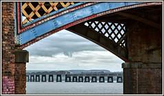Underneath the arches (david.hayes77) Tags: hst highspeedtrain class43 43175 dundee riversidedrive riversideapproach 2019 firthoftay taybridge scotrail 1a75 iron girders rivets