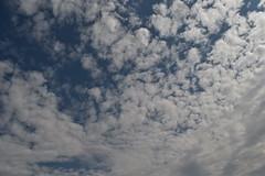 Zaldibar (eitb.eus) Tags: eitbcom 1548 g151298 tiemponaturaleza tiempon2019 fenomenosatmosfericos bizkaia zaldibar nereaaagirre