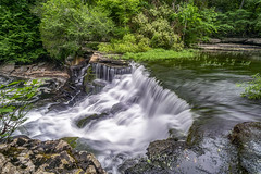 Big Falls, 2019.06.17 (Aaron Glenn Campbell) Tags: oldstonefortarchaeologicalpark coffeecounty manchester duckriver waterfall tnwaterfalls bigfalls tennessee statepark moss trees rock nature outdoors optoutside nikcollection colorefexpro viveza slowshutter sony a6000 ilce6000 mirrorless rokinon 12mmf2ncscs wideangle primelens manualfocus emount ndfilter neutraldensity tiffen