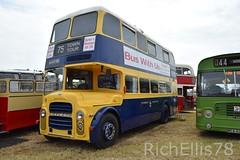 Add Watermark20190625032441 (richellis1978) Tags: truck lorry haulage transport logistics kelsall show 2019 bus leyland bjk675d eastbourne 75 pd2 east lacs h60r