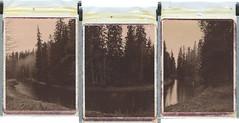 U2 (Maija Karisma) Tags: polaroid instant pola littlebitbetterscan polaroid180 chocolate peelapart expiredfilm triptych river nature