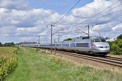 UM de TGV A sur l'Ouest (Alexoum) Tags: sncf tgv atlantique nantes paris train loire possonière ouest angers