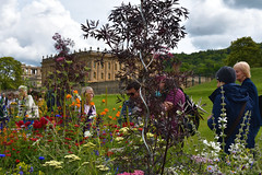 Fade to Grey Long Border (Bri_J) Tags: rhs chatsworthflowershow2019 chatsworthhouse edensor derbyshire uk chatsworth flowershow nikon d7500 fadetogrey longborder markmalaczynski