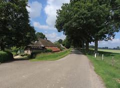 Neerloon - Maasdijk (Grotevriendelijkereus) Tags: ravenstein neerloon noord brabant netherlands holland nederland village town dorp dike dijk road street weg straat maas river rivier polder uiterwaarden
