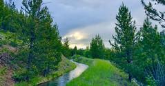 Wallowas Salt Creek Summit Camping (Doug Goodenough) Tags: bicycle bike cycle camping rpod rv trailer wallowa oregon joseph mountains forest pedals spokes drone mavic dji air views vista snow clouds bulls evo estream ebike drg531 drg53119 drg53119p drg53119psaltsummit june spring 2019 19 dsaltsummit