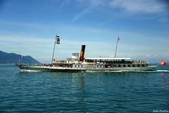 Rafraîchissement à tous les étages !! (pontfire) Tags: cgn suisse lac léman