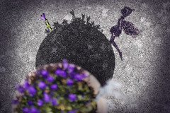 On her way. Around a dreamy shadow world. (Gudzwi) Tags: sombras lookingcloseonfriday bluebells vonoben fromabove closeup schatten verrückterdienstag hct garten blumentopf glockenblume lila violett beton figur gartenschmuck zink rund blumen fee schwarzweis farbig colourkey shadow crazytuesday garden plantpot bellflower purple violet concrete figure gardenjewelry zinc round flowers fairy blackandwhite coloured flora gartenschätze dreamworld traumland