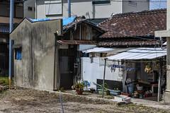Western House (m-louis) Tags: 32mm j5 nikon1 house japan kaizuka laundry life osaka plant タマネギ 大阪 家 日本 貝塚
