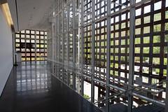 20190615-IMG_0438 Art Museum Visit 09 (hirschwrites) Tags: aspen aspenartmuseum colorado earth us usa westernus