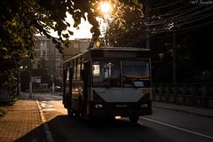 Early Morning Trolleybus (WT_fan06) Tags: rocar 212e targu jiu romania trolleybus