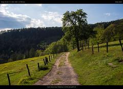 near Fleckenstein (netozeme) Tags: nature oldlenses oldlensnewcamera vintagelenses zeiss zeisslens carlzeissjena carlzeiss sonya7 sonyalpha sonyalpha7 sonyphotography prakticar prakticab praktica path