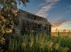 This Old House (mikeSF_) Tags: mikeoria oria wwwmikeoriacom mikeoriaphotography pentax pentax645z 645 645z outdoor farm baconisland jonestract middleriver shack house farming farmhouse dilapidated disused agriculture nazi prisoners german pow camp sunrise clouds wideangle blend
