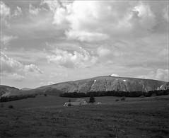 vue sur le Hohneck - Vosges (JJ_REY) Tags: hohneck vosges montagnes mountains bw largeformat 4x5 film ilford fp4plus rodinal toyofield 45a rodenstock aposironarn 150mmf56 alsace france