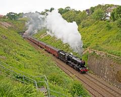 48151 Dalesman - Wilpshire 25/6/201 (John Pownall) Tags: 48151 stanier8f dalesman wilpshire