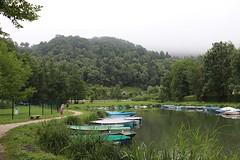 Alps_Aiguebelette_954 (Manohar_Auroville) Tags: alps lac lago lake mountains aiguellette savoie manohar luigi fedele