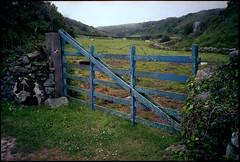 Barrière bleue (Gauthier V.) Tags: olympusxa prairie barrière portail lahague normandie france