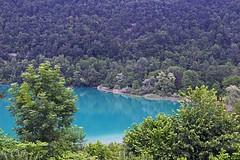 Alps_Aiguebelette_965 (Manohar_Auroville) Tags: alps lac lago lake mountains aiguellette savoie manohar luigi fedele