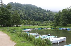 Alps_Aiguebelette_955 (Manohar_Auroville) Tags: alps lac lago lake mountains savoie manohar luigi fedele