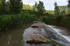 Presa (AlvarHyls) Tags: water agua agricultura nature naturaleza green river río castillayleón burgos presa reservoir verano