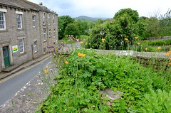 Askrigg Yorkshire (Wensleydale) (Adam Swaine) Tags: yorkshire northyorkshire village villages rural ruralvillages flora flowers england english englishvillages thedales northeast uk ukcounties ukvillages villagecottage britain british aonb counties countryside countrylanes beautiful