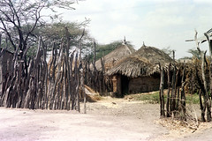 78-691 (ndpa / s. lundeen, archivist) Tags: nick dewolf color photograph photographbynickdewolf 1976 1970s film 35mm 78 reel78 africa northernafrica northeastafrica african ethiopia southernethiopia ethiopian fence sticks branches wood building buildings house houses home homes hut huts thatchroof thatchedroof sky clouds powerlines trees