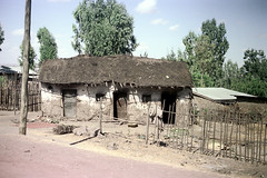 78-701 (ndpa / s. lundeen, archivist) Tags: nick dewolf color photograph photographbynickdewolf 1976 1970s film 35mm 78 reel78 africa northernafrica northeastafrica african ethiopia southernethiopia ethiopian building buildings house houses home homes thatchroof thatchedroof sheetmetalroof utilitypole sky bluesky clouds trees dirt road street fence sticks branches wood bundleofwood bundle bundleofsticks village unidentified unidentifiedvillage