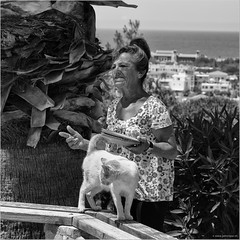 Cat lady (John Riper) Tags: johnriper street photography straatfotografie square bw black white zwartwit mono monochrome candid john riper canon 6d 24105 l cyprus κύπροσ paphos pafos πάφοσ páfos cat lady palm tree pussy plates food view sea horizon