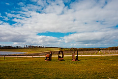 Pt Leo Estate (NatalieTracy) Tags: australia victoria morningtonpeninsula sculpturepark ptleo ptleoestate sculpture gardensculpture vineyard sky garden park art artinstallation