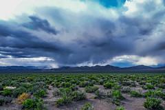 DSC00498--along U.S. Highway 93, Eastern Nevada (Lance & Cromwell back from a Road Trip) Tags: ushighway50 nevada whitepinecounty highway93 roadtrip 2019 24240mm 24240mmlens a7ii sony sonyalpha travel