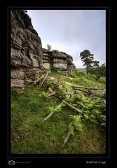 Shaftoe Crags (mhdigitalphotography) Tags: nikon nikond7100 landscape colour color crags rocks stone hdr grass stile