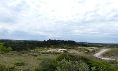 Nationaal Park Zuid-Kennemerland (joeke pieters) Tags: 1470612 panasonicdmcfz150 kennemerduinen nswandeling santpoortnoordoverveen nationaalparkzuidkennemerland noordholland nederland netherlands holland duinen dunes landschap landscape landschaft paysage